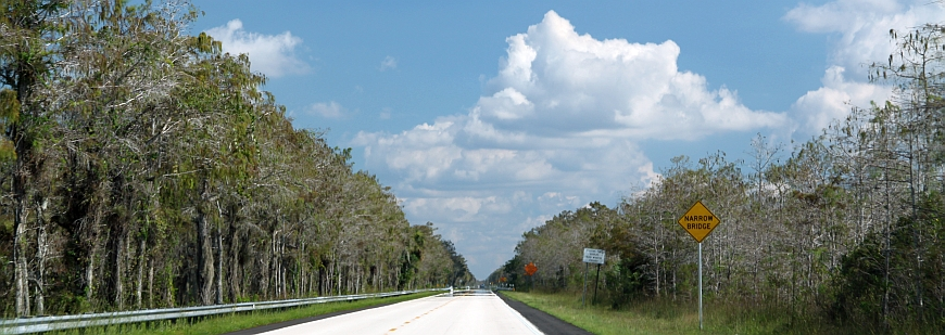 Big Cypress National Preserve, Everglades, Florida